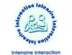 Perspectives on Intensive Interaction